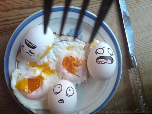 Eggs by nocturnalmoth