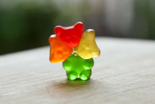 Gummi Bear Surgery - Head Transplant